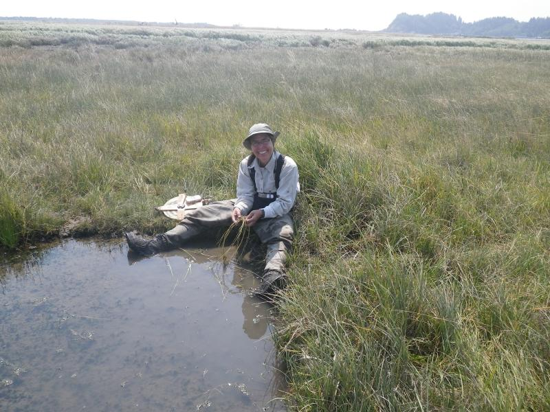Amy Borde identifies grass species at the edge of a brackish marsh.